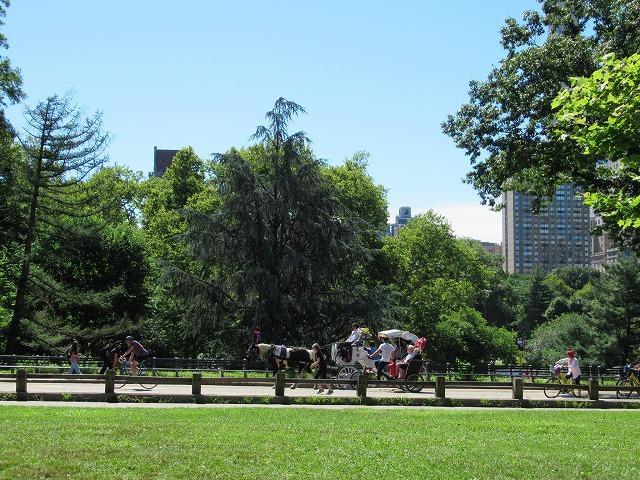 セントラルパーク内を走る馬車