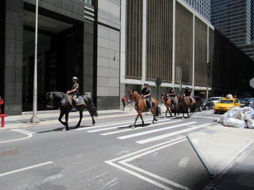 NYの馬に乗った警察官