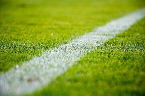 芝グラウンドの白線