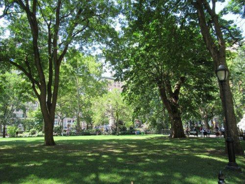 マディソンスクエアパークの木陰