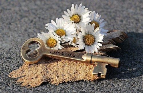 デイジーの花と鍵